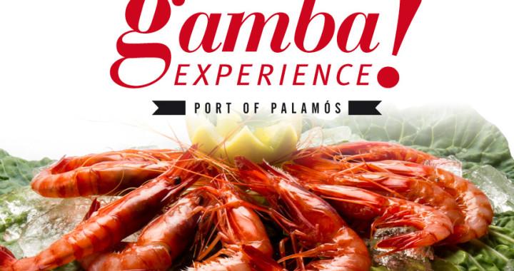 gamba-experience