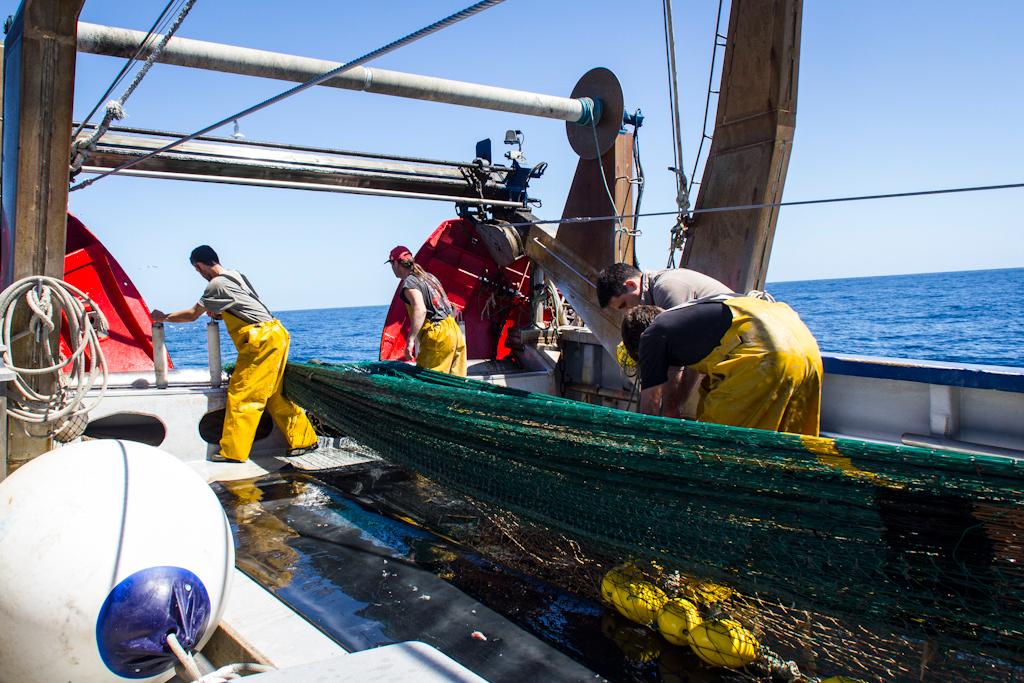 Y para los más atrevidos… Pescaturismo!