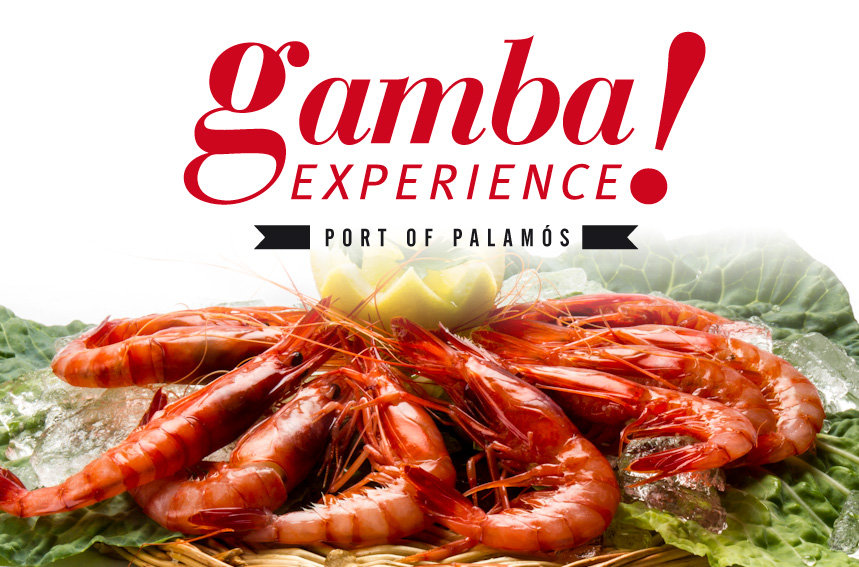 ¡Ven a conocernos a Palamós y degusta nuestra gamba fresca!